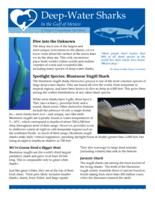 Deep-Water Sharks in the Gulf of Mexico: A Deep-C Consortium Fact Sheet