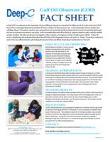 Gulf Oil Observers (GOO) Fact Sheet