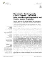 Hypertrophic Cardiomyopathy Cardiac Troponin C Mutations Differentially Affect Slow Skeletal And Cardiac Muscle Regulation