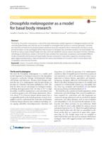 Drosophila melanogaster as a model for basal body research.