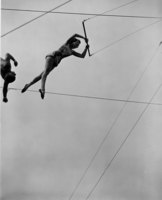 Aerialists swinging on the trapeze