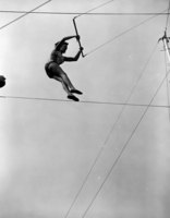 Aerialist on the trapeze