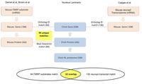 Proteomic analyses - figure 3