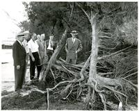 A group of men examining damage caused by erosion of the Clearwater beaches