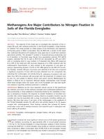 Methanogens Are Major Contributors To Nitrogen Fixation In Soils Of The Florida Everglades