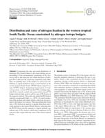 Distribution And Rates Of Nitrogen Fixation In The Western Tropical South Pacific Ocean Constrained By Nitrogen Isotope Budgets