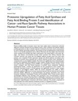 Proteomic Upregulation of Fatty Acid Synthase and Fatty Acid Binding Protein 5 and Identification of Cancer- and Race-Specific Pathway Associations in Human Prostate Cancer Tissues.
