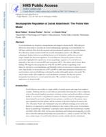 Neuropeptide Regulation of Social Attachment