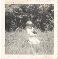 Unidentified pre-school child holding a rabbit in grassed area