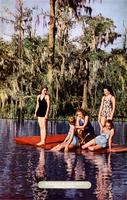 A group swimming at Wakulla Springs