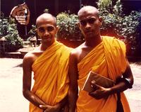 Two monks in yellow robes