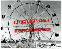 Ferris Wheel with a Pepper for Senate banner