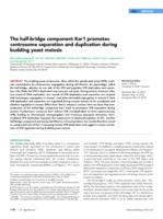 half-bridge component Kar1 promotes centrosome separation and duplication during budding yeast meiosis.