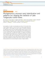Phylogenomics uncovers early hybridization and adaptive loci shaping the radiation of Lake Tanganyika cichlid fishes.