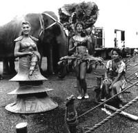 Performers and elephants backstage