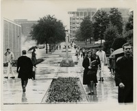 Students Walking on Campus on a Rainy Day