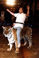 Tiger trainer Josip Marcan sitting on tiger