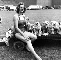 Yvonne Shea and her dogs