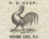 Florida Promotional and Historical Materials